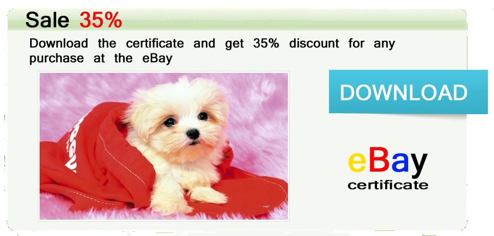 Doberman Puppies For Sale In Florida-marsundtyphon de